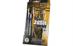 harrows Josh Payne 180 Steeltip 90% 26 GR