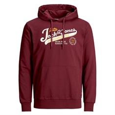 Jack & Jones Logo Hooded