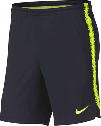 Nike Manchester City Dry Squad Short 2018/2019