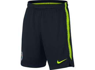 Nike Manchester City Dry Squad Short Junior 2018/2019