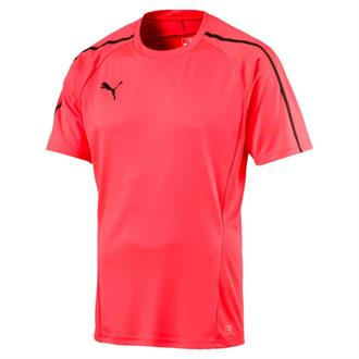 Puma Evotrg Training Shirt