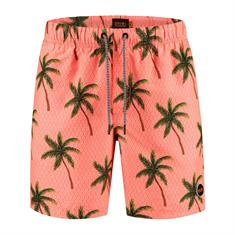 Shiwi Painted Palms Zwemshort