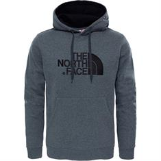 The North Face Drew Peak Pullover Hooded